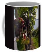 Bodensee Vineyards Coffee Mug