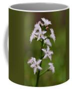 Bog-bean Coffee Mug
