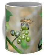 Bogues Sur Une Plante Deux Coffee Mug