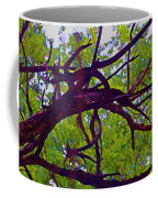 Bois D'arc Coffee Mug
