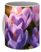 Bold Awakening Coffee Mug