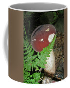Bolete Mushroom And Fern Coffee Mug