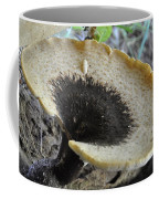 Dryad's Saddle Polyporus Squamosus Coffee Mug