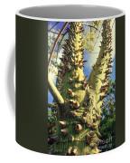 Bombacaceae - Floss Silk Tree - Chorisia Speciosa Hawaii Coffee Mug