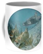 Bonefish Pursued By A Shark, 1972 Coffee Mug
