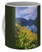 M-05921-bonneville Mountain Reflected In Wallow Lake Coffee Mug