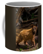 Boo Boo Coffee Mug
