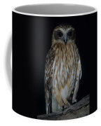 Boobook Coffee Mug