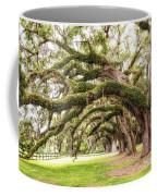 Boones Oaks Coffee Mug