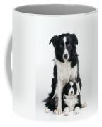 Border Collie Dog & Puppy Coffee Mug
