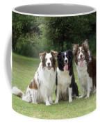 Border Collie Dogs Coffee Mug