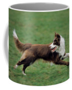 Border Collie Running Coffee Mug