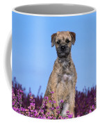 Border Terrier Dog, In Heather Coffee Mug