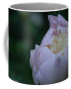 Bordering On Pink Coffee Mug