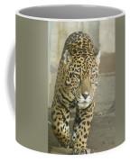 Born To Run Coffee Mug by Trish Tritz