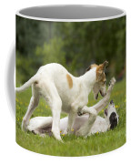 Borzoi Puppies Playing Coffee Mug