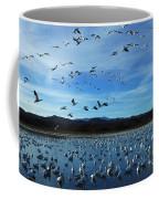 Bosque Del Apache Flight Line Coffee Mug