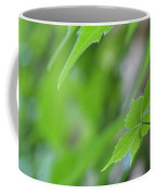 Boston Ivy Bokeh Coffee Mug