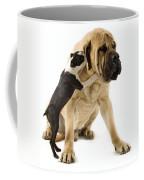 Boston Terrier And Mastiff Coffee Mug