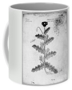 Botany: Opium Poppy Coffee Mug