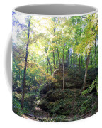 Bottom Of Devil's Punchbowl Wildcat Den Coffee Mug
