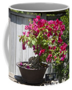 Bougainvillea Bonsai Tree Coffee Mug