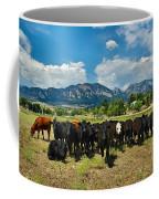 Boulder Beef Coffee Mug