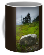 Boulder On The Shore At The Mount Desert Narrows In Maine Coffee Mug