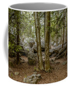 Boulder Woods Coffee Mug