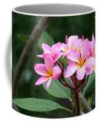 Bouquet Of Pink Plumeria Coffee Mug