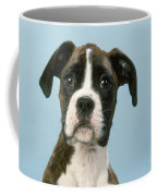Boxer Dog, Close-up Of Head Coffee Mug by John Daniels