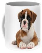 Boxer Puppy Coffee Mug by Mark Taylor