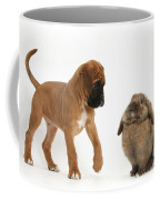 Boxer Puppy With Lionhead-lop Rabbit Coffee Mug