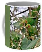 Brace Of Chiriqui Conures Coffee Mug