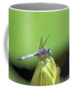 Bracing For The Wind Coffee Mug