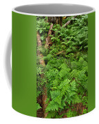 Bracken Coffee Mug