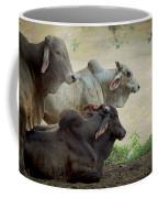 Brahman Cattle Coffee Mug by Peggy Collins