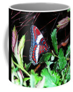 Branch Encounter Coffee Mug