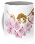 Branch With Cherry Blossoms Coffee Mug