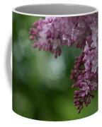 Branch With Spring Lilac Flowers Coffee Mug
