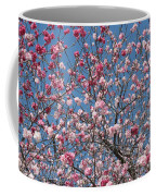 Branches And Blossoms Coffee Mug