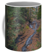 Bridal Vail Falls - Cvnp Coffee Mug