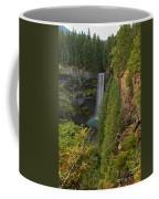 Brandywine Falls Plunge Coffee Mug