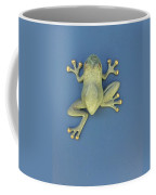 Brass Frog Coffee Mug