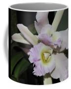Brassocattleya Princess Teresa 1 Of 2 Coffee Mug