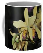 Brassolaeliocattleya Grodsky's Gold Coffee Mug