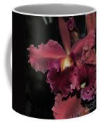 Brassolaeliocattleya Helen Huntington  Chevy Chase Coffee Mug