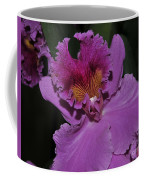 Brassolaeliocattleya Norman's Bay  Hercules Coffee Mug