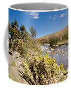 Breamish Valley In Spring Coffee Mug