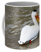 Breeding Plumage Coffee Mug